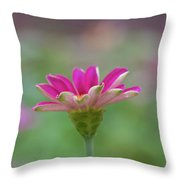Pink Zin Throw Pillow