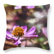 Pink Zinnia Bokeh Throw Pillow