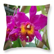 Pinkishyellow Orchid Throw Pillow