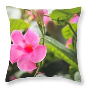 Pinks # 2 Throw Pillow