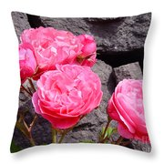 Pinks On The Rocks Throw Pillow
