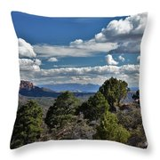 Pinon Forest At The Top Of Kolob Canyon Throw Pillow
