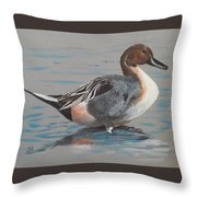 Pintail Throw Pillow by Jean Ann Curry Hess