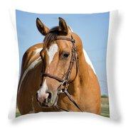 Pinto Pony Portrait Throw Pillow