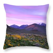 Pioneer Mountain Sunset Throw Pillow