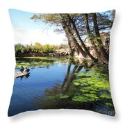 Pipe Springs Pond Throw Pillow