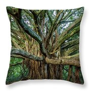 Pipiwai Banyan Throw Pillow