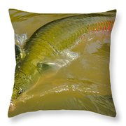 Pirarucu Or Arapaima Throw Pillow
