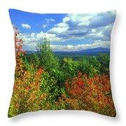 Pisgah State Park Foliage Throw Pillow