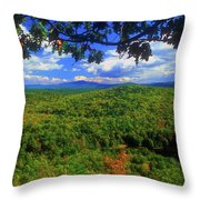 Pisgah State Park Ridge Trail View Throw Pillow