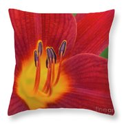 Pistil, The Female Reproductive Part Of A Flower Throw Pillow
