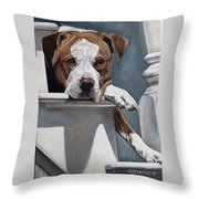 Pitbull Stare Throw Pillow
