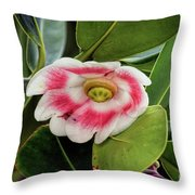 Pitch Apple Blossom Throw Pillow