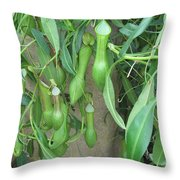 Pitcher Plant Madness Throw Pillow