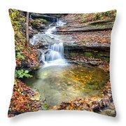 Pixley Falls State Park Lesser Falls Throw Pillow