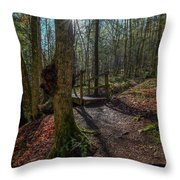 Pixley Park Boonville New York Throw Pillow