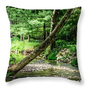 Place Of Peace Throw Pillow