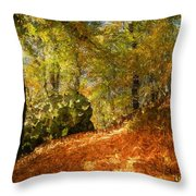 Place Of Power Throw Pillow