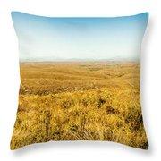 Plain Plains Throw Pillow