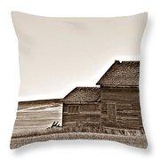 Plains Homestead Sepia Throw Pillow
