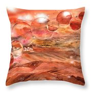 Planet Earth - Save Our Deserts Throw Pillow