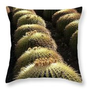 Planet Of Cactus Throw Pillow