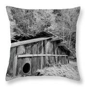 Plank House Throw Pillow