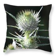 Plant 09-01-18 Throw Pillow
