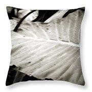 Plant 8650 Throw Pillow