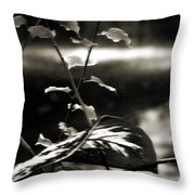 Plant 8657 Throw Pillow