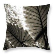 Plant 8661 Throw Pillow