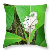 Plant Artwork Throw Pillow