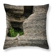 Plant Growing In Wall Throw Pillow