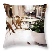 Plant In A Cup In A Cafe Throw Pillow