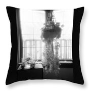 Plant In The Window  Throw Pillow