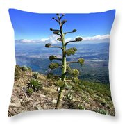Plant On Volcano Slope Throw Pillow