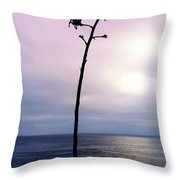 Plant Silhouette Over Ocean Throw Pillow