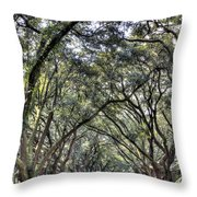Plantation Drive Throw Pillow