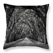 Plantation Oak Alley Throw Pillow