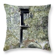 Plantation View Throw Pillow