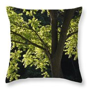 Planted By Streams Throw Pillow
