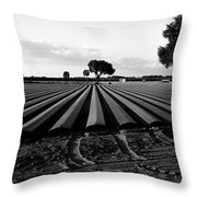 Planted Fields Throw Pillow