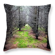 Planted Spruce Forest Throw Pillow