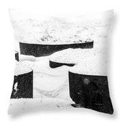 Planters And Snow Throw Pillow