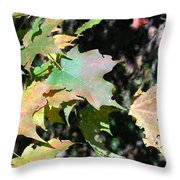 Planting Fields / Leaves Throw Pillow