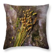 Plants And Seeds Throw Pillow