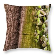 Plants And Trees Hawaii Throw Pillow