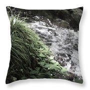 Plants By The River Throw Pillow