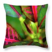 Plants In Hawaii Throw Pillow