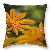 Plants Of Beauty Throw Pillow